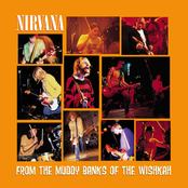альбом Nirvana - From the Muddy Banks of the Wishkah
