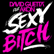альбом David Guetta - Sexy Bitch