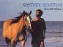 клип Whitney Houston - How Will I Know, смотреть бесплатно